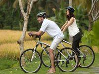 Индонезия/о. Бали/Удуд/Alaya Resort Ubud 4*/велопрогулки