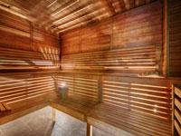 Finnish-Sauna, Aleksander 5*, Рогашка Слатина, Словения