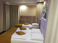 Номер в отеле, Alpina 3*, Краньска-Гора, Словения