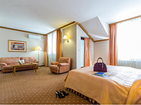 Номер в отеле, Habakuk 4*, Марибор, Словения